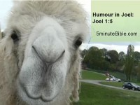 Humour in the Bible: Book 29: Joel 1:5