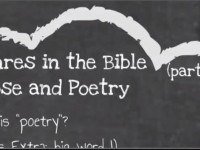 Genres in the Bible: part 2: Prose and Poetry